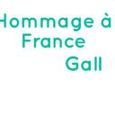 bandeau_france_gall.jpg